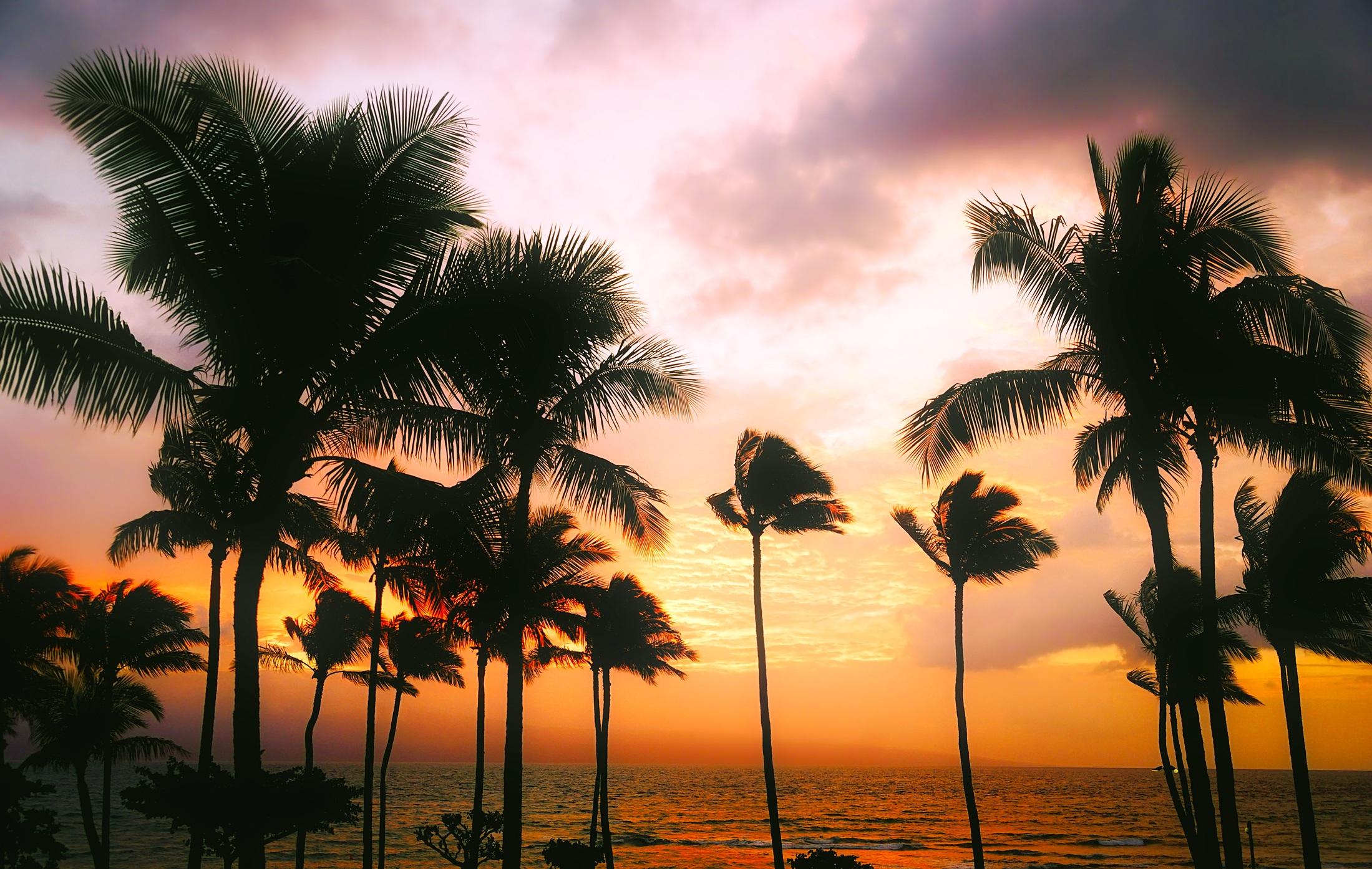 ondeviaggi-immagine-viaggio-hawaii